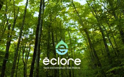 Lettre ouverte d'Environnement Mauricie | Fonds Éclore: Trois-Rivières, la pionnière